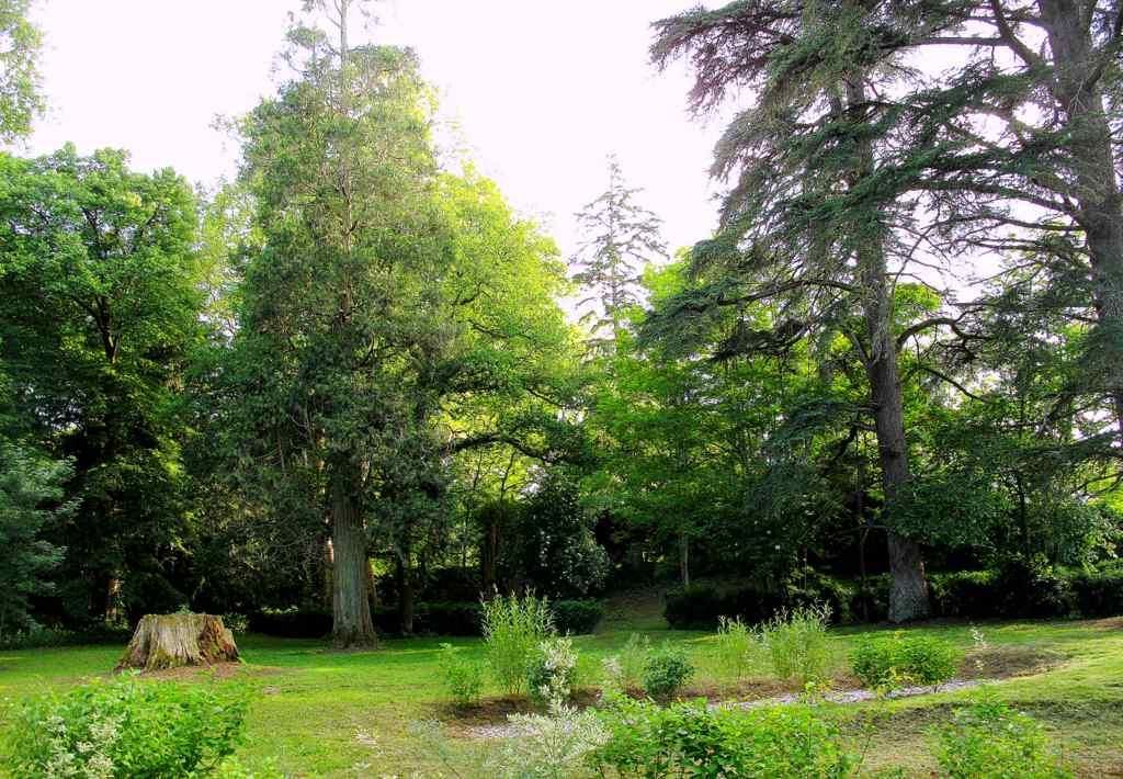 Location de Salle – Chambres Hôtes – Gîtes - Tarn 15km Albi